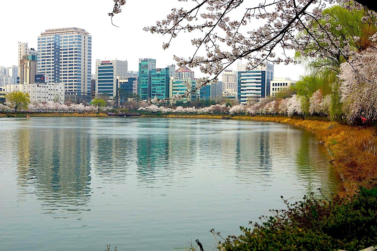 Seokchon Lake in Jamsil during Spring