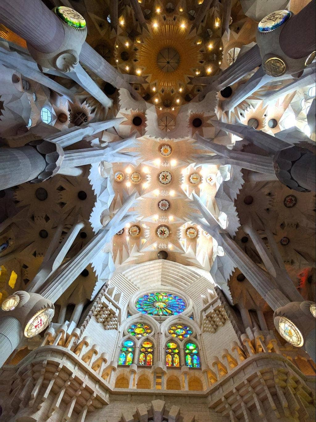The ceiling of Sagrada Familia with the famous tree-shaped columns