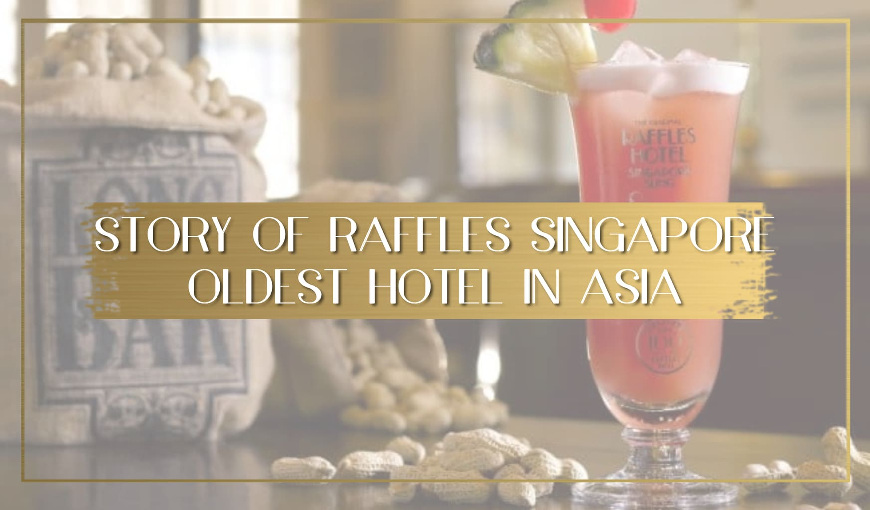 Story of Raffles Singapore main