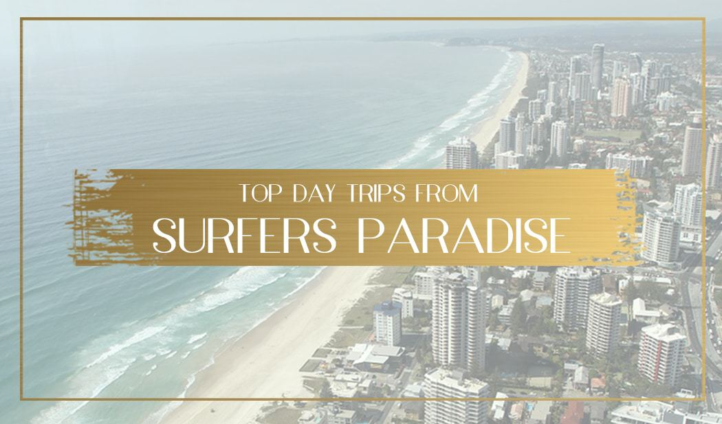 Top Day Trips from Surfers Paradise main