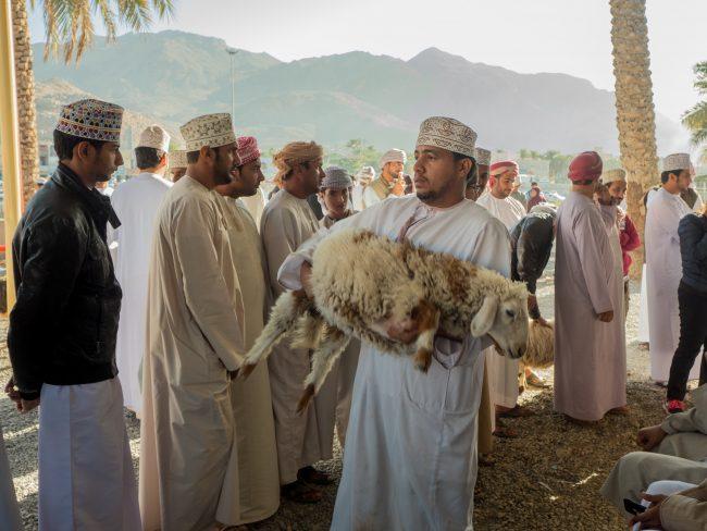 Nizwa Market Sheep for sale