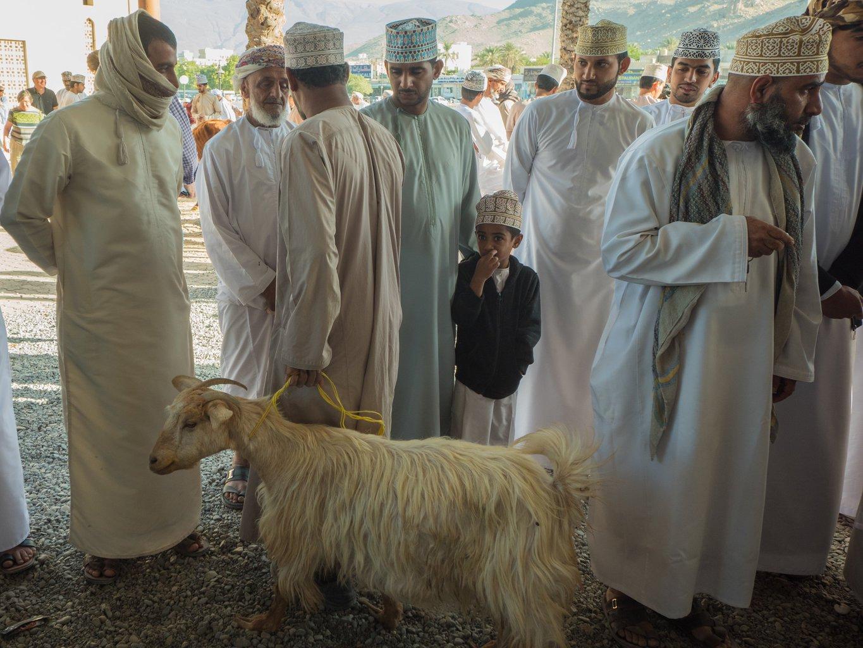 Nizwa Market goat