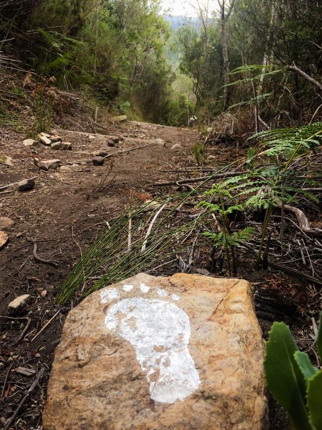 Follow the footpath in the Kalanderkloof trail