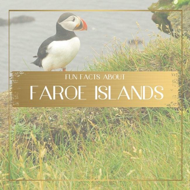 Fun facts about Faroe Islands Feature
