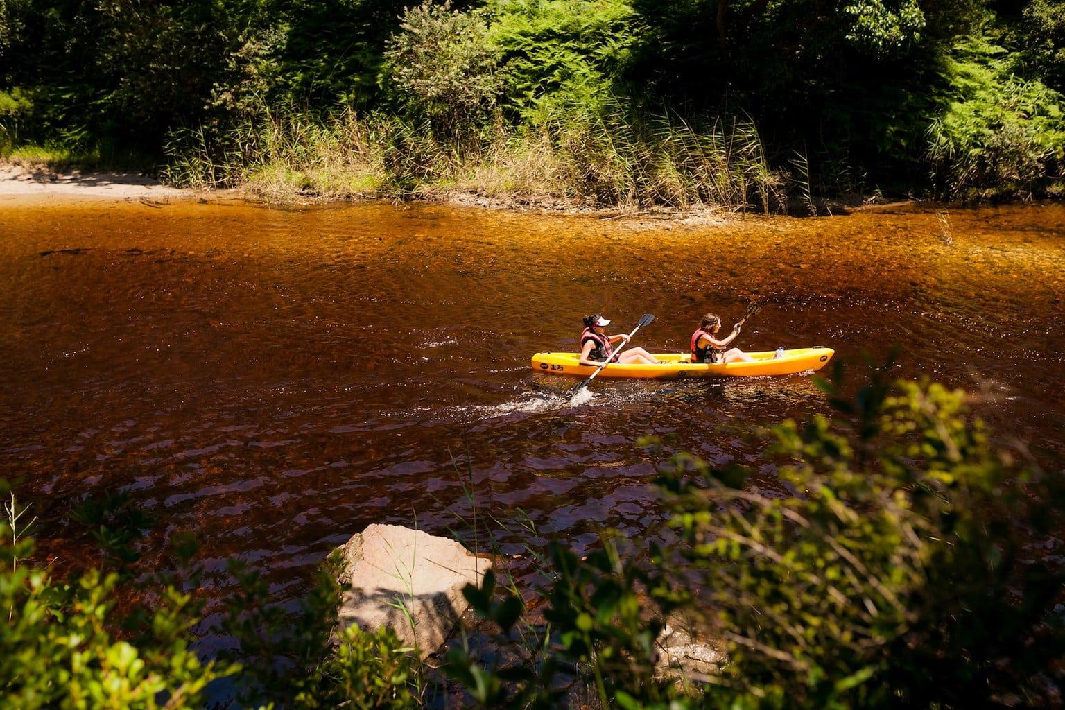 Kayaking in the Wilderness