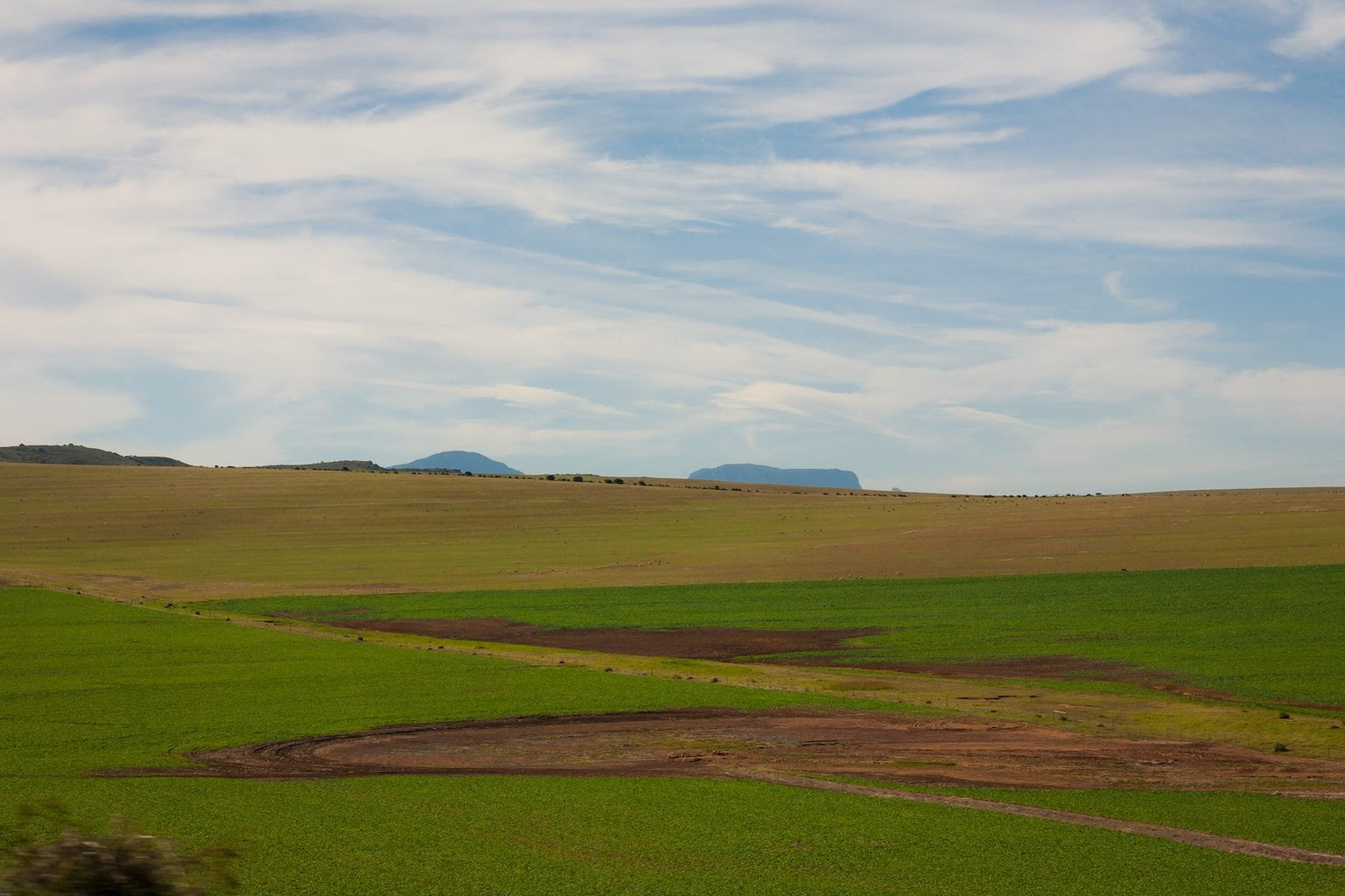 Scenery along the Garden Route