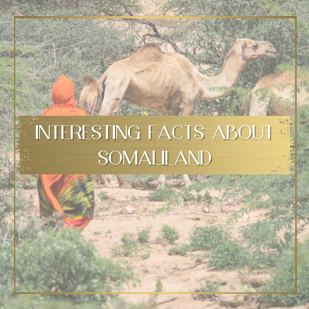Facts about Somaliland feature