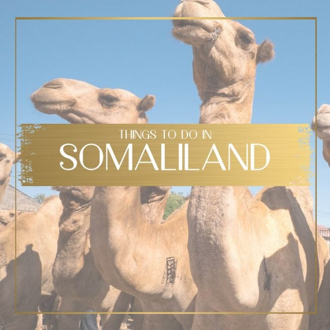 Things to do in Somaliland feature