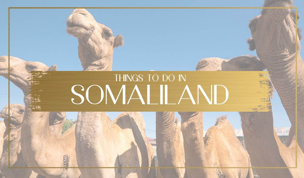 Things to do in Somaliland main