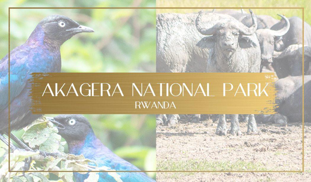 Akagera National Park main