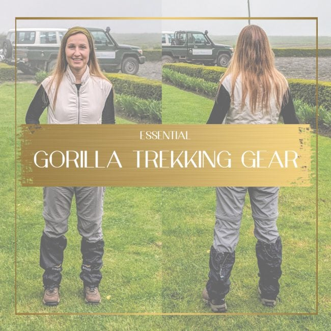 Gorilla packing list feature