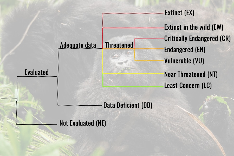 IUCN wildlife classifications