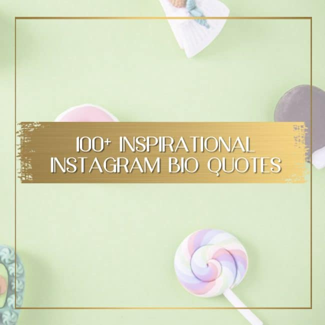 300 Instagram Bio Quotes And Caption Ideas To Inspire