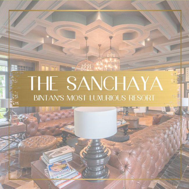 Review of the Sanchaya feature