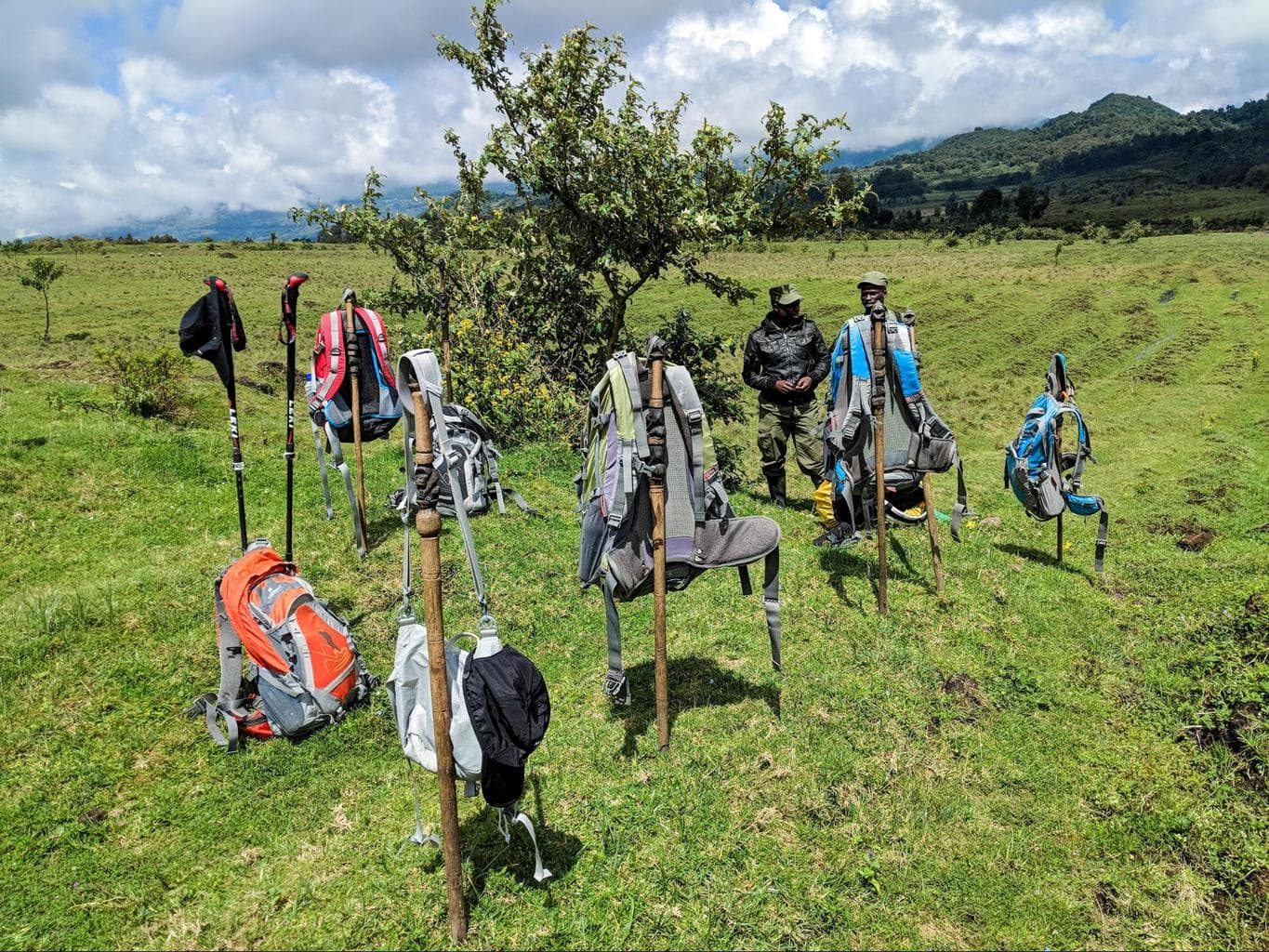 The backpacks worn by my gorilla trekking group