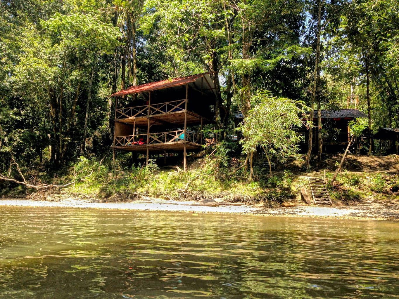 House in the jungle of Brunei