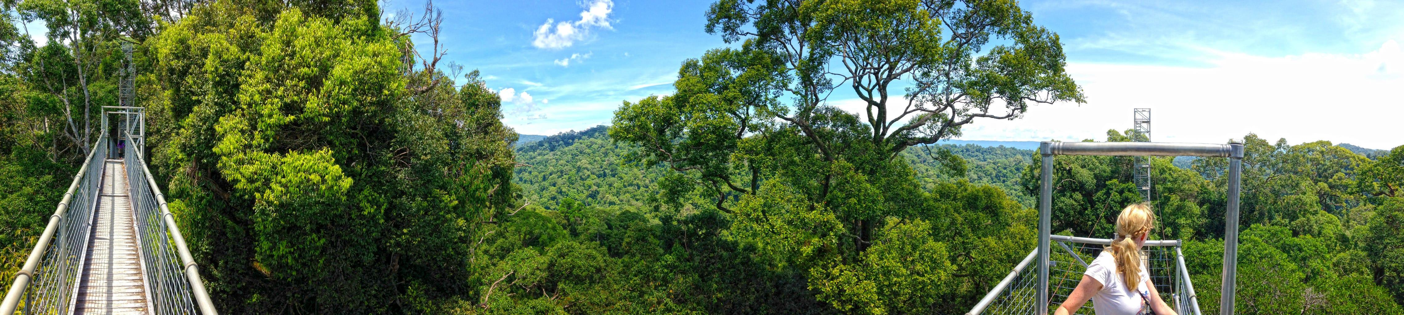 Panoramic shot from the bridge