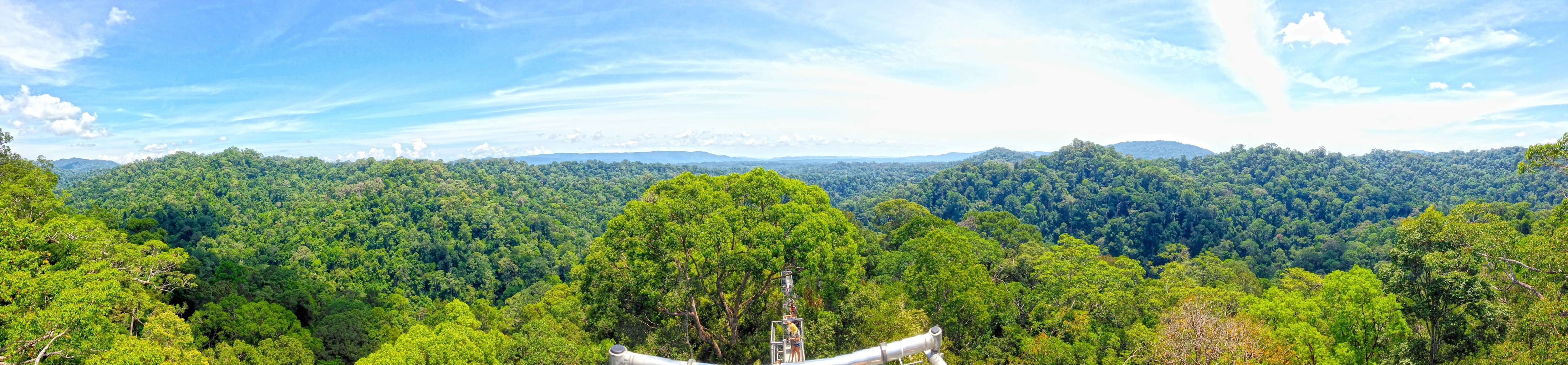 View from the top of Brunei