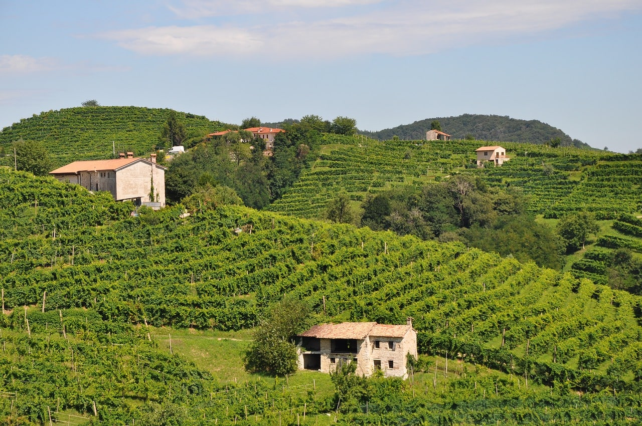 Prosecco hills, a UNESCO heritage site candidate