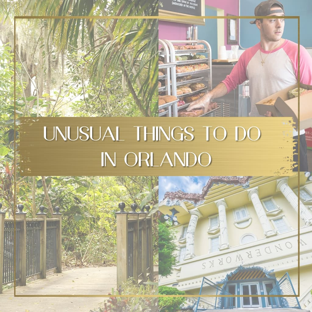 Unusual things to do in Orlando feature