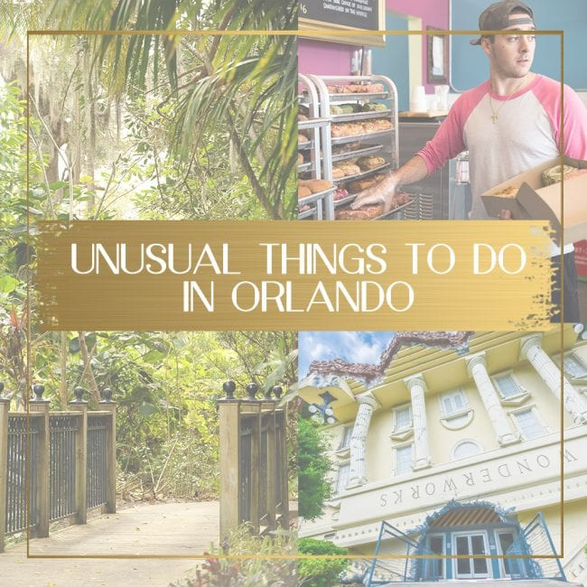Unusual, cool and different things to do in Orlando - Once