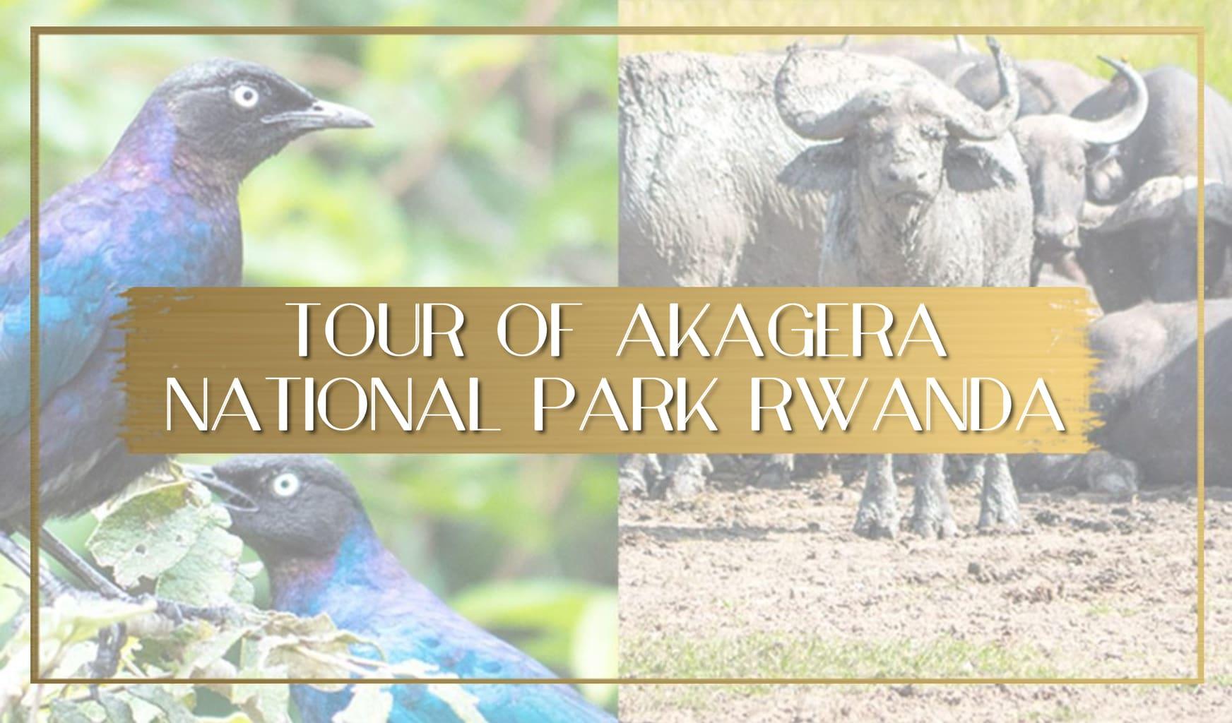 Akagera National Park in Rwanda main