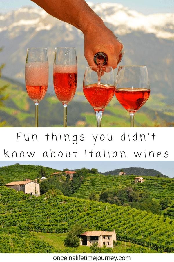Fun Facts about Italian Wines Pinterest