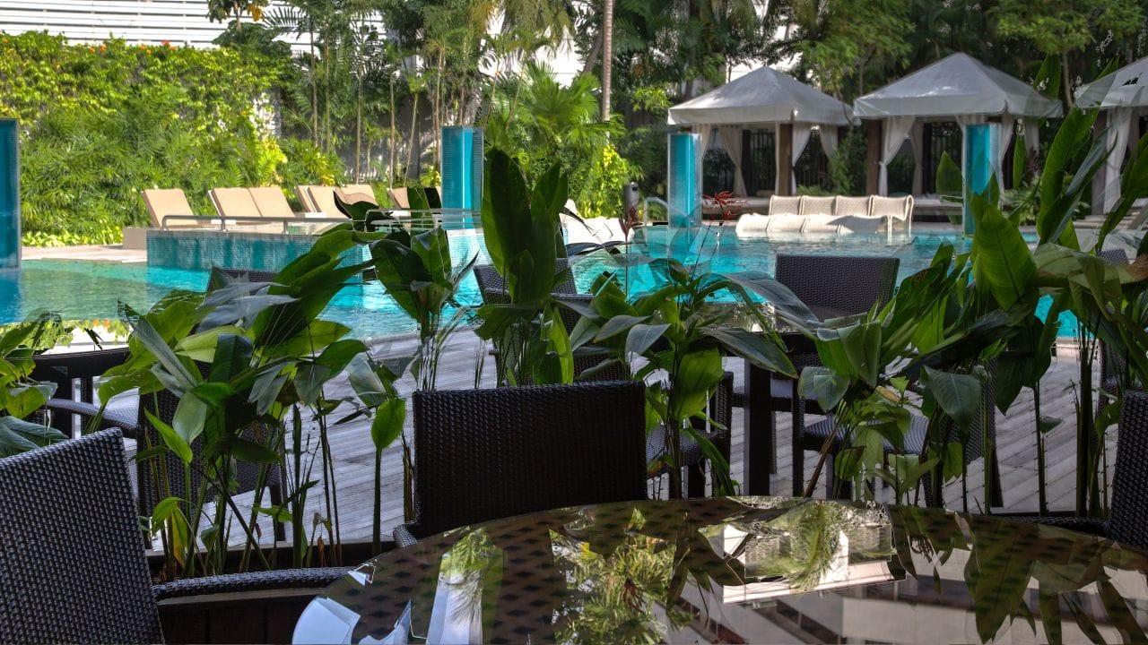 Grand Hyatt Singapore Oasis Poolside