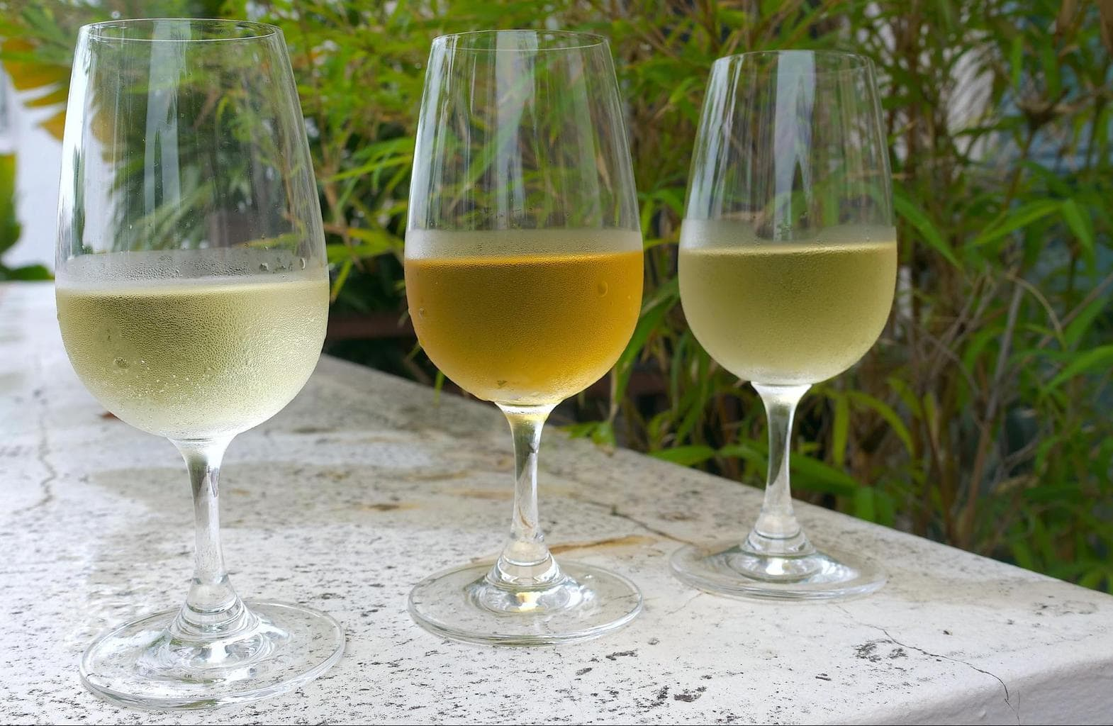 Three full bodied white wines