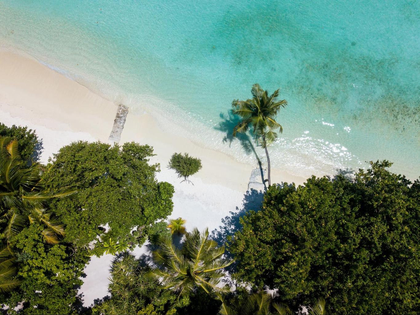 The white sand beach at LUX* Maldives