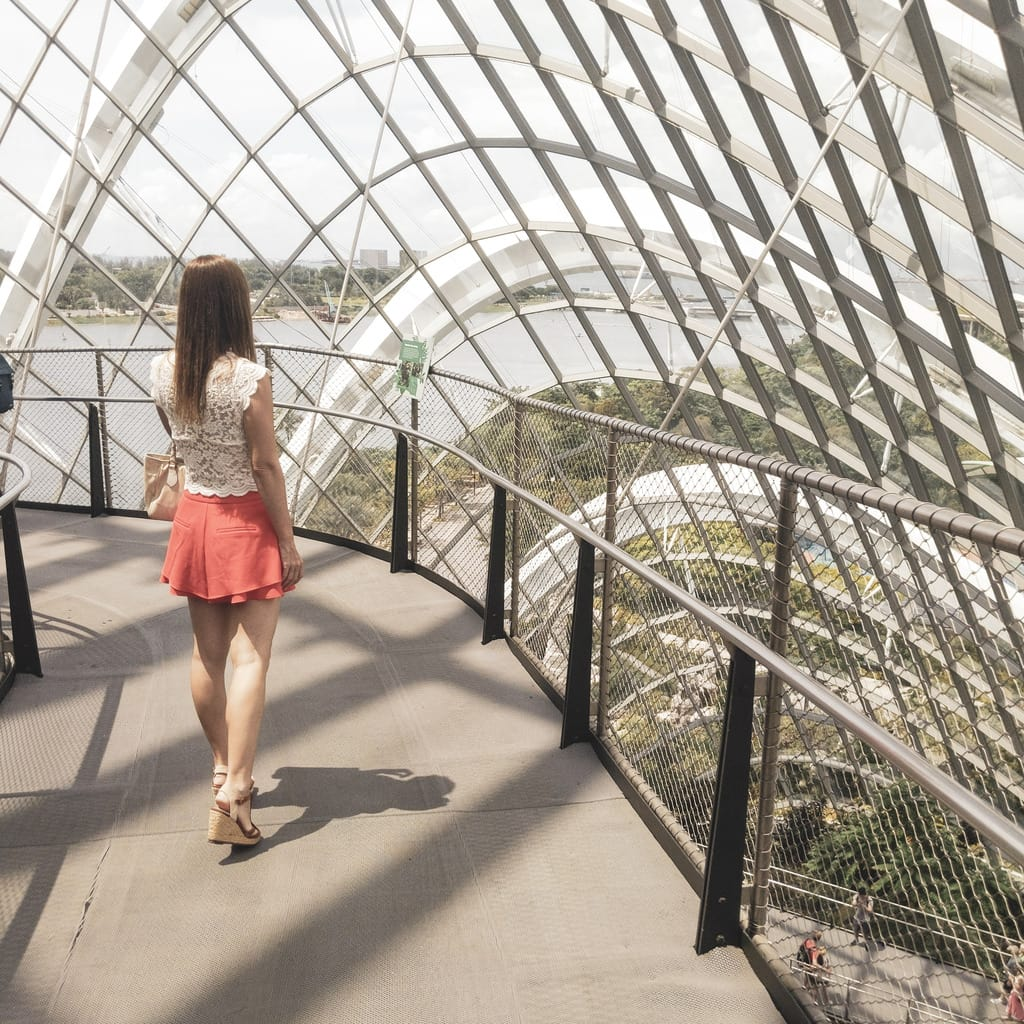 """Instagrammable Singapore Cloud Forest"""