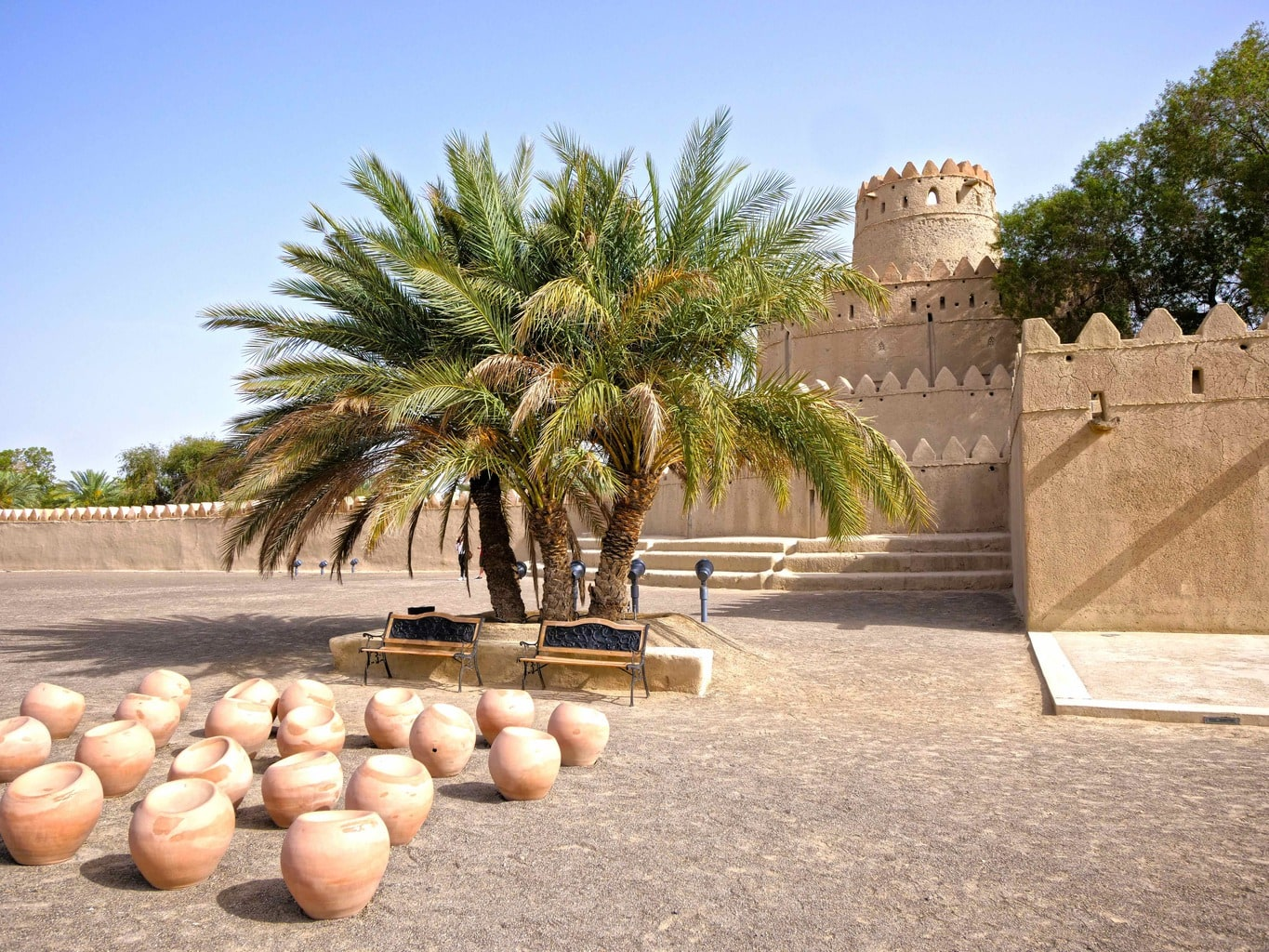 Al Jahili Fort palm tree