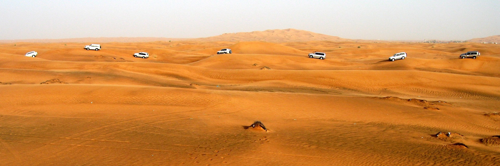 Go on a desert safari