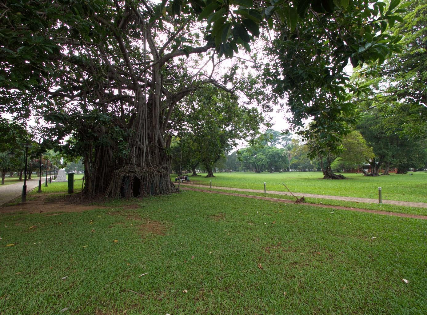 Viharamaha Devi Park
