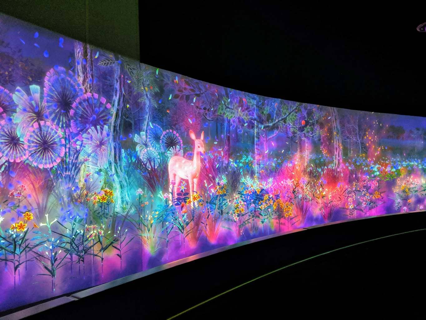 TeamLab installation National Museum Singapore