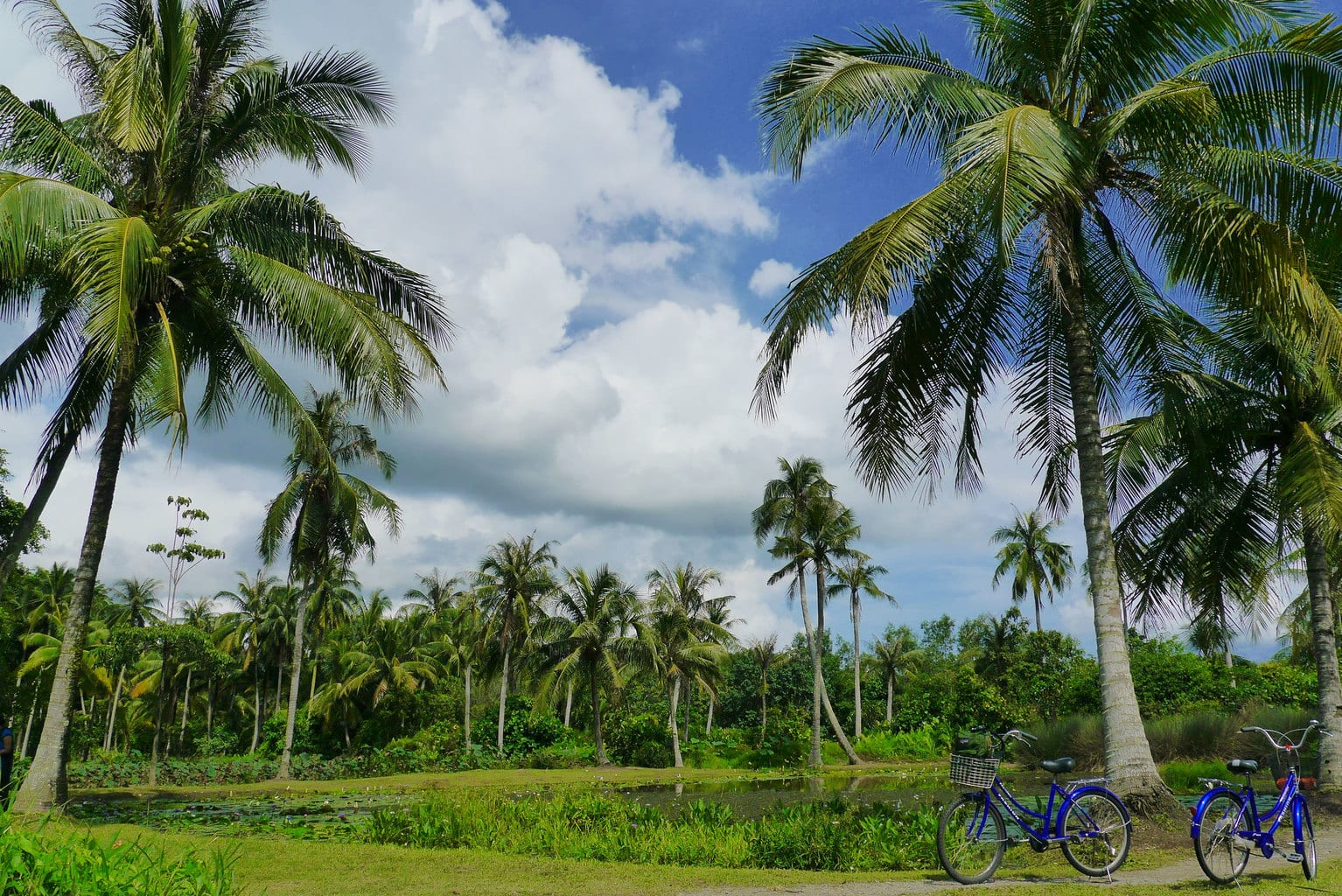 Getting around by bike on Pulau Ubin
