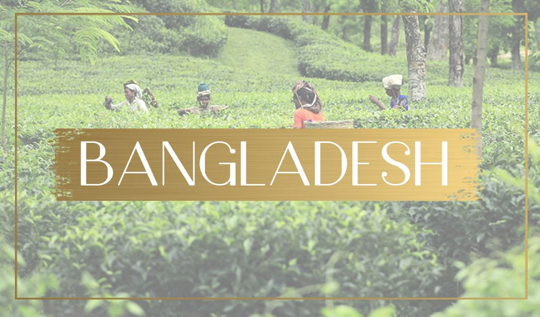 Destination Bangladesh feature