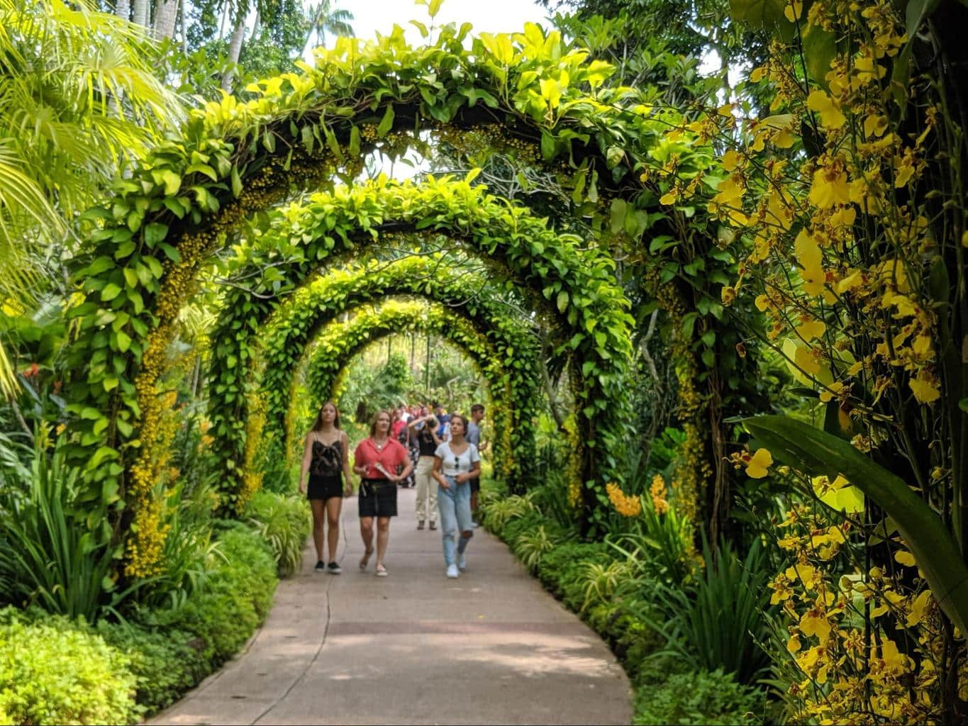 Get married at the Botanic Gardens
