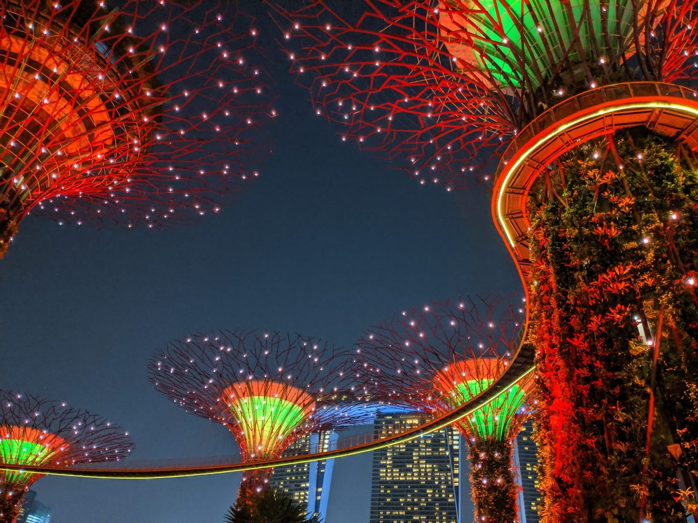 Supertree grove Gardens by the Bay Light Show