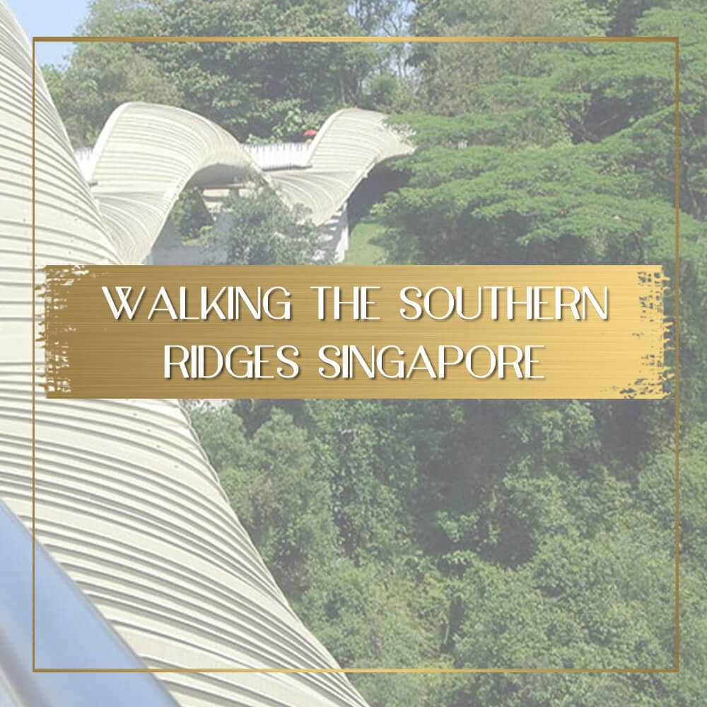 Southern Ridges Henderson Waves feature