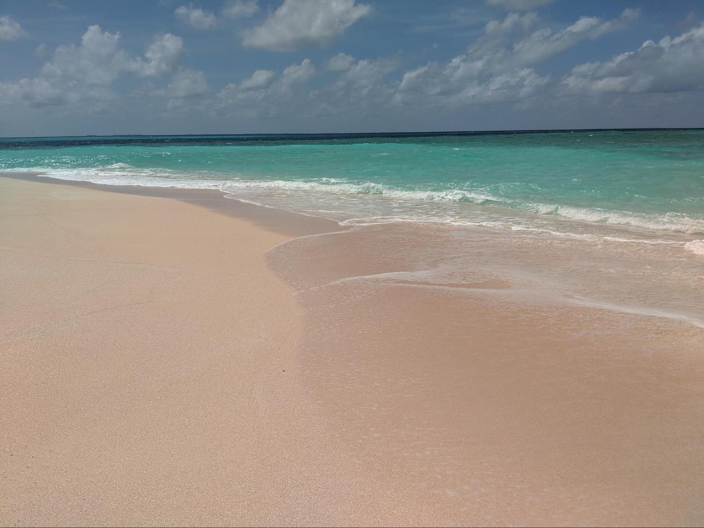Desolate beaches on Funafuti Conservation Area