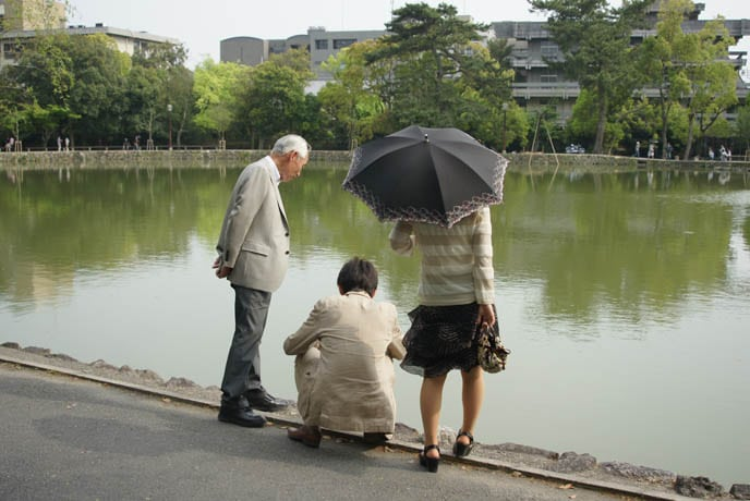 Elderly Japanese