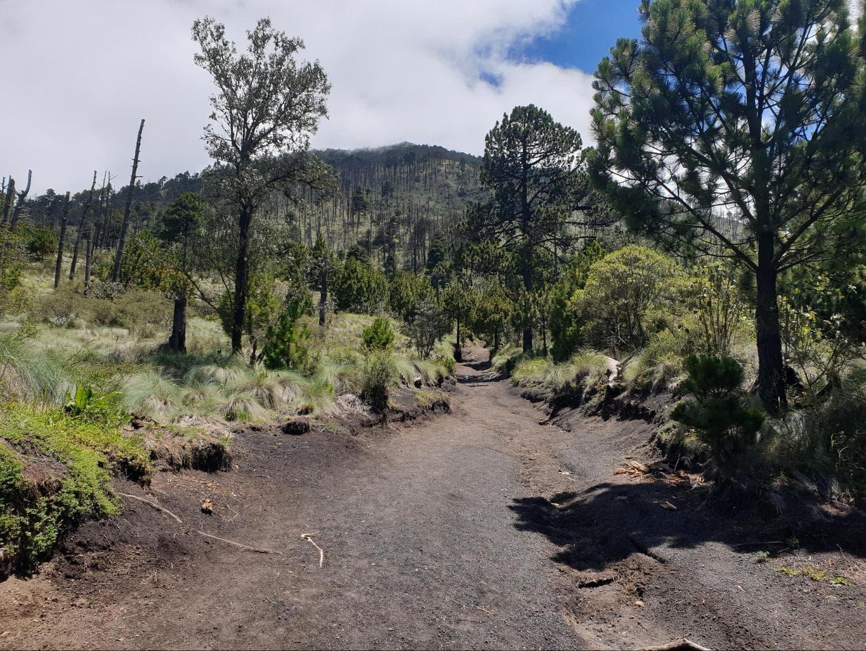 Hiking trail up Acatenango Volcano