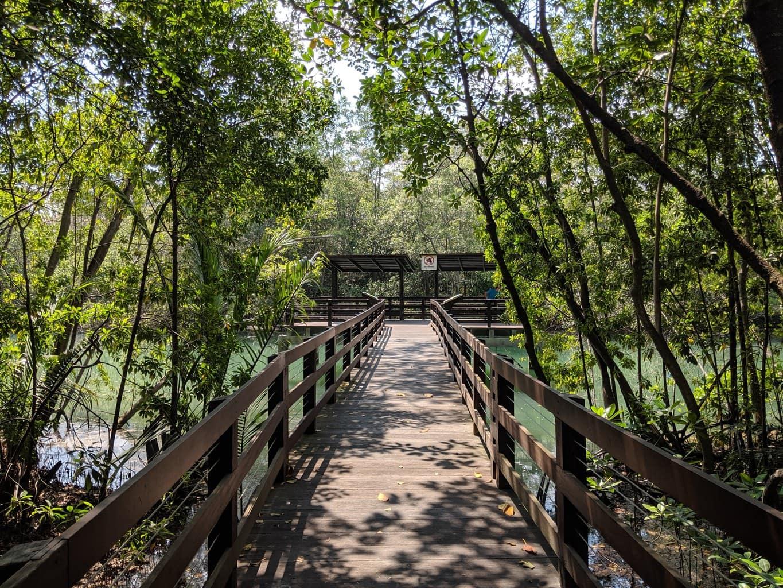 Pasir Ris Mangrove Park