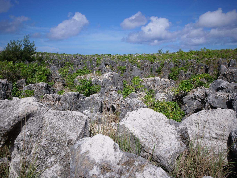 Phosphate rocks in Nauru