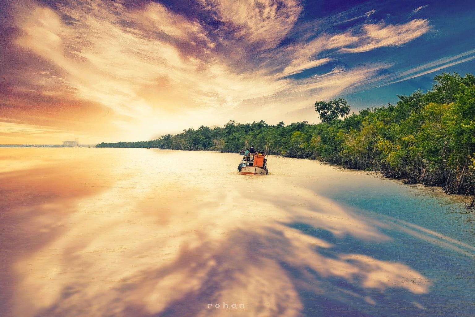 Sundarbans ecosystem