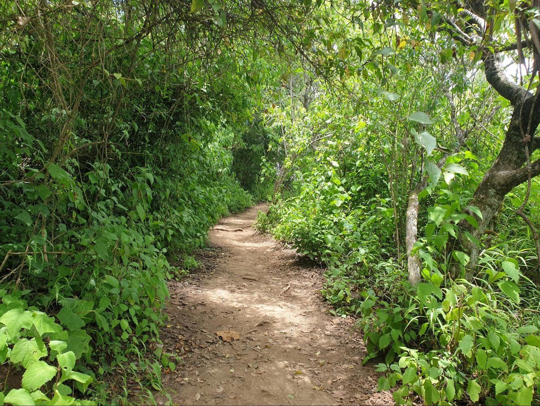 The trails around Hobbitenango
