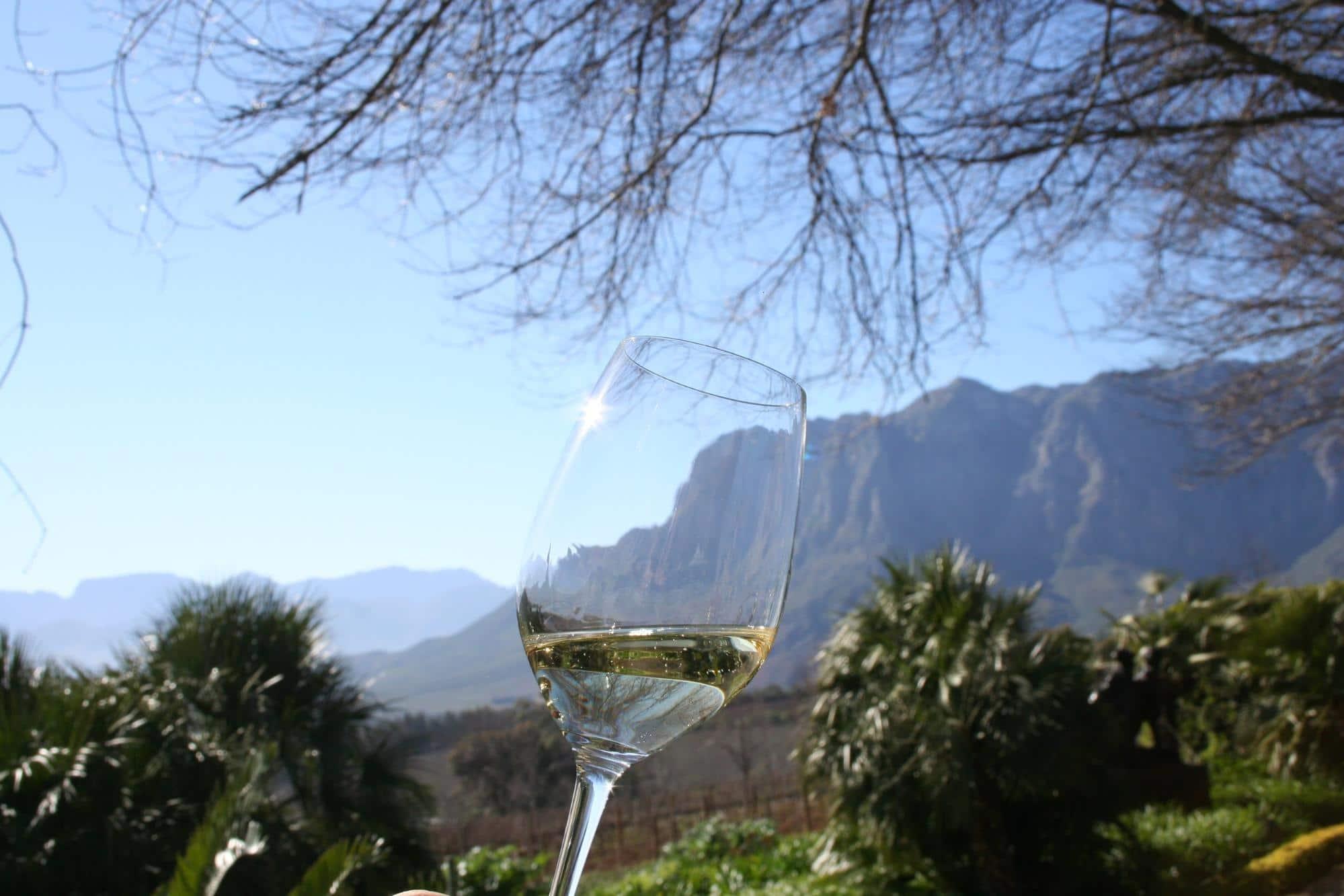 A typical wine tasting in Stellenbosch
