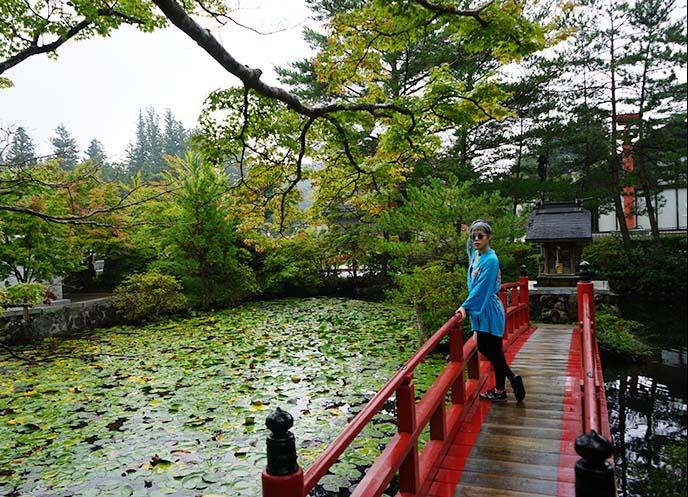 Beautifully green Japan