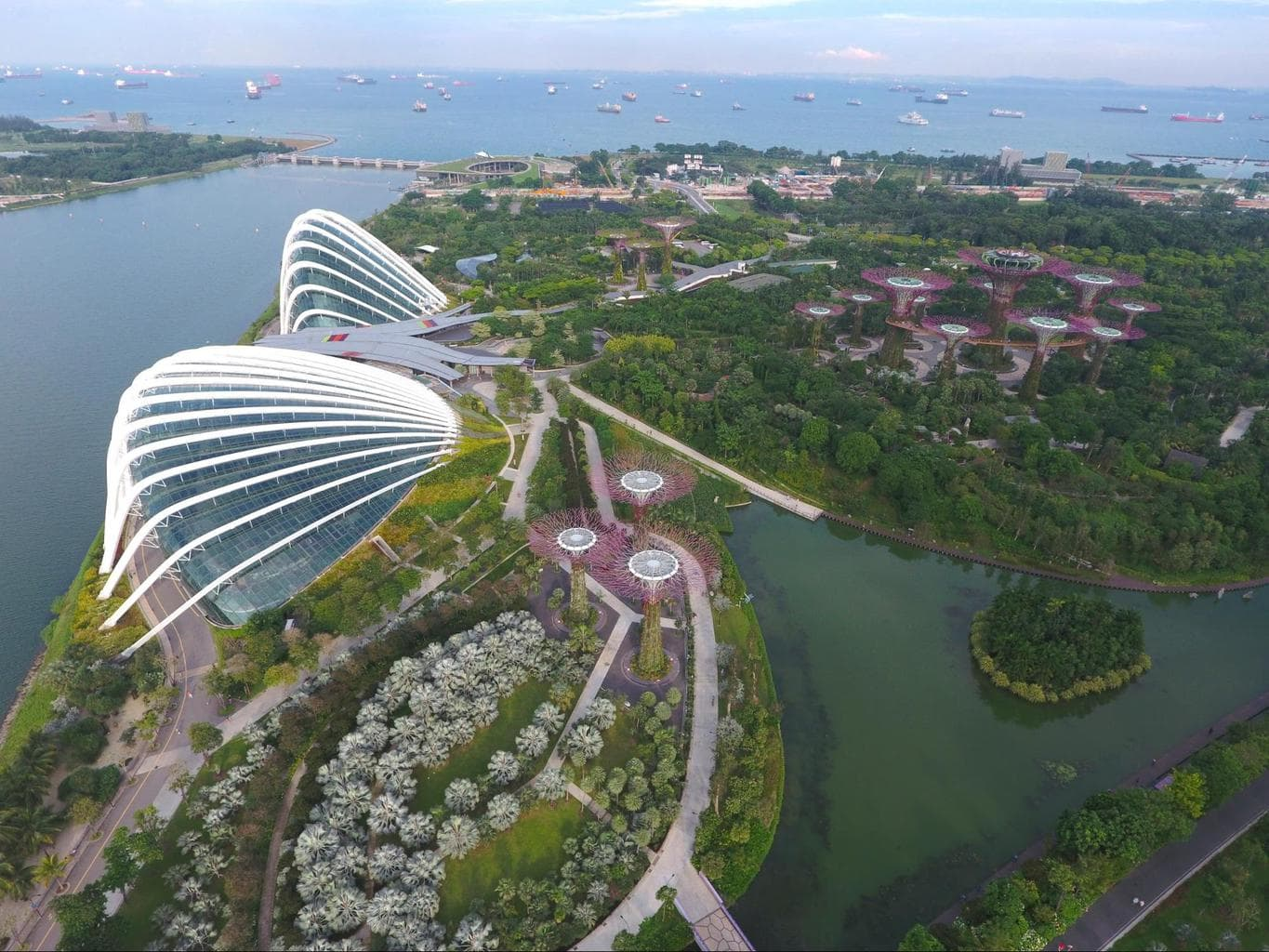 Drone shot of the Conservatories at Gardens by the Bay